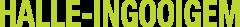 Halle Ingooigem  logo